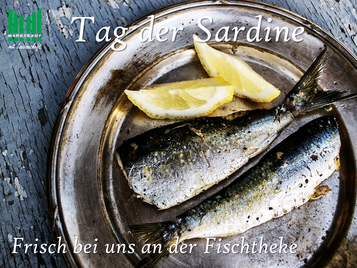 Tag der Sardine